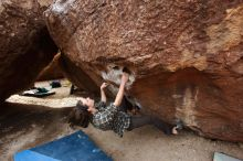 Bouldering in Hueco Tanks on 11/25/2019 with Blue Lizard Climbing and Yoga  Filename: SRM_20191125_1100570.jpg Aperture: f/4.5 Shutter Speed: 1/400 Body: Canon EOS-1D Mark II Lens: Canon EF 16-35mm f/2.8 L
