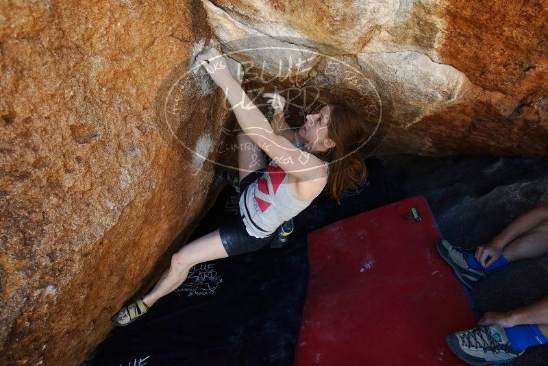 Bouldering in Hueco Tanks on 03/29/2019 with Blue Lizard Climbing and Yoga  Filename: SRM_20190329_1132591.jpg Aperture: f/5.6 Shutter Speed: 1/250 Body: Canon EOS-1D Mark II Lens: Canon EF 16-35mm f/2.8 L
